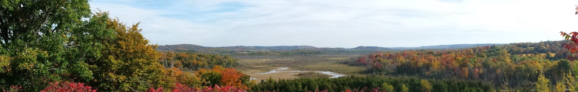 View of Windy River Conservation Area from the viewing platform