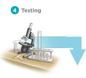 Trust the Tap Source Water protection graphic of testing