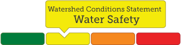 example of multi colour image highlighting Water Safety