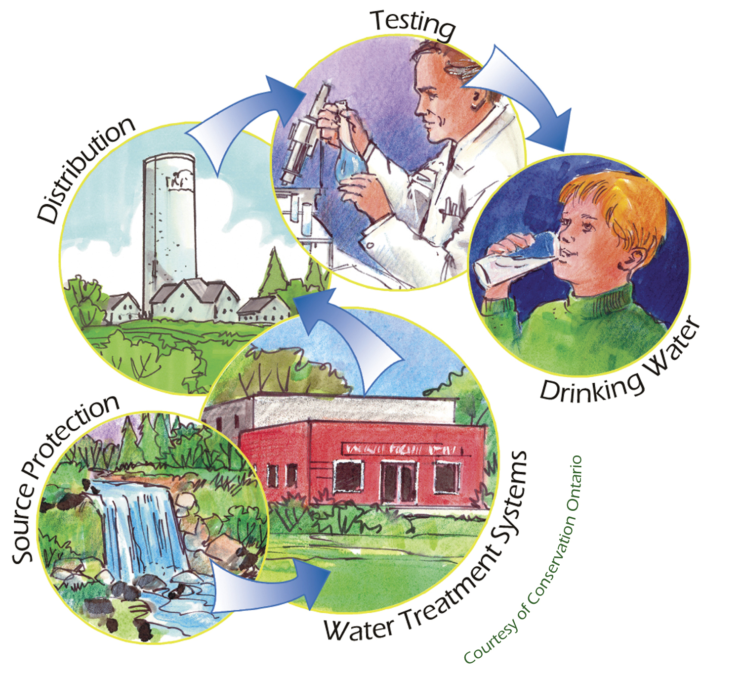A cycle of the steps to protect drinking water