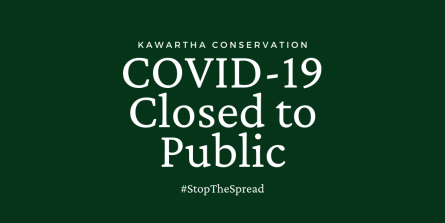 Covid Closure Sign
