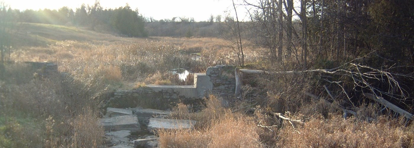 creek partially block by concrete in field